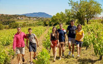 Une expérience client réussie dans les établissements Qualité Tourisme Occitanie Sud de France !